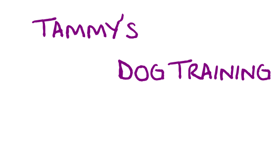 Tammy's